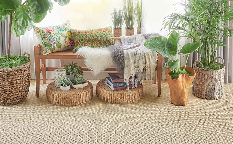 Living room Decorated with lots of different plants