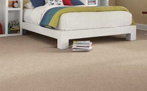 Stain-Resistant Carpet in Florida